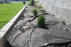 Trnava-zahrada-na-kluc-13