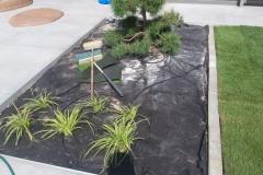 Trnava-zahrada-na-kluc-16