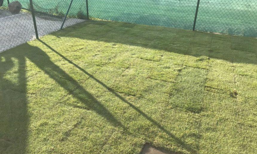 Bratislava – Hradská – pokládka kobercového trávnika